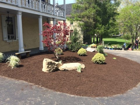 Revitalization at Gardenview Manor