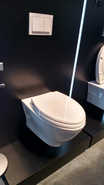 bathroom modifications with tankless toilet